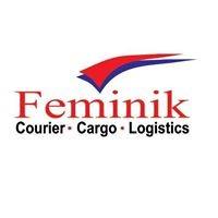 Feminik Logistics Nig Ltd Linkedin