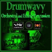 Drumwavy VST VST3 Audio Unit: Orchestral and Ethnic Percussion VST