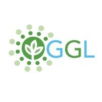 Global Green Lighting Llc Linkedin