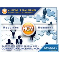 Carrera Consultor En Sap Hcm Linkedin