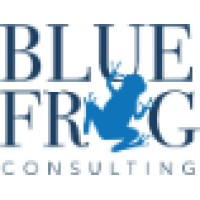 Blue frog consulting linkedin for Frog consulting