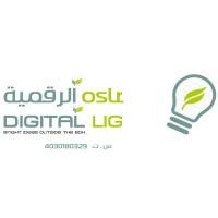 Digital Light Trading Est  | LinkedIn