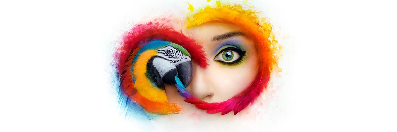 Adobe Creative Cloud | LinkedIn