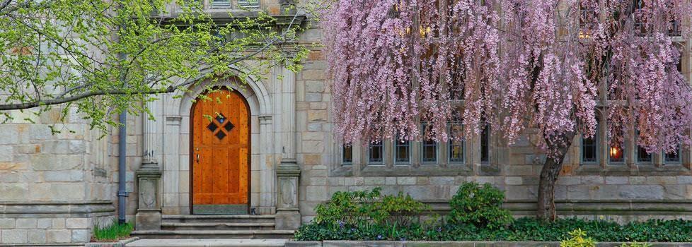 Yale University Careers   LinkedIn