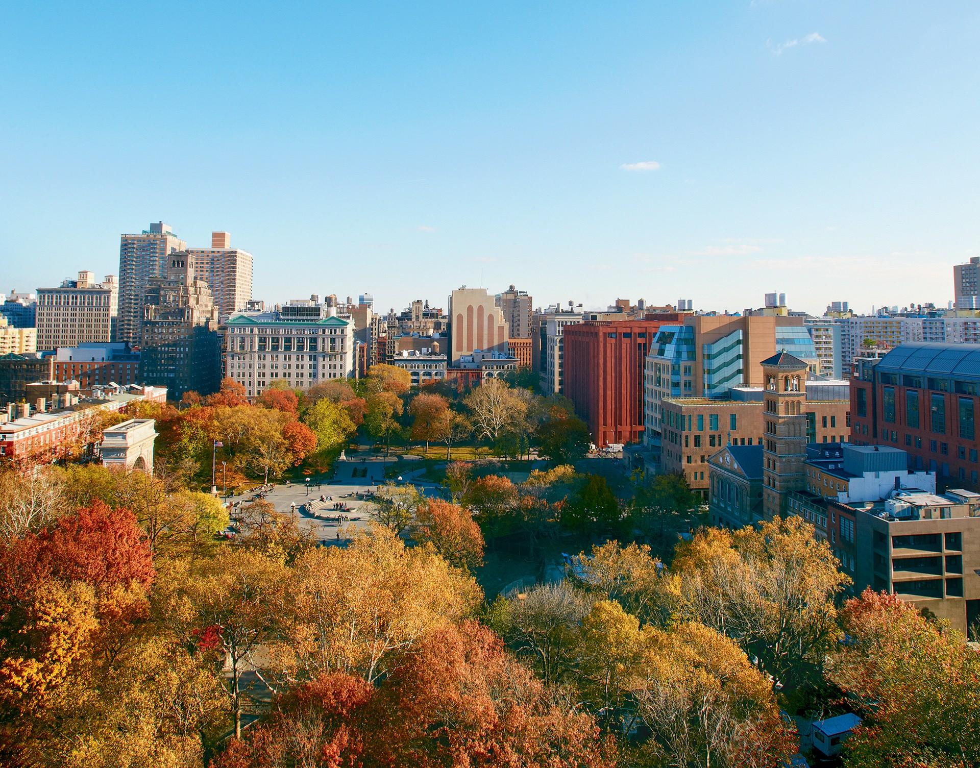 NYU College of Global Public Health | LinkedIn