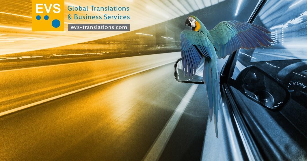 Careers at EVS Translations | LinkedIn