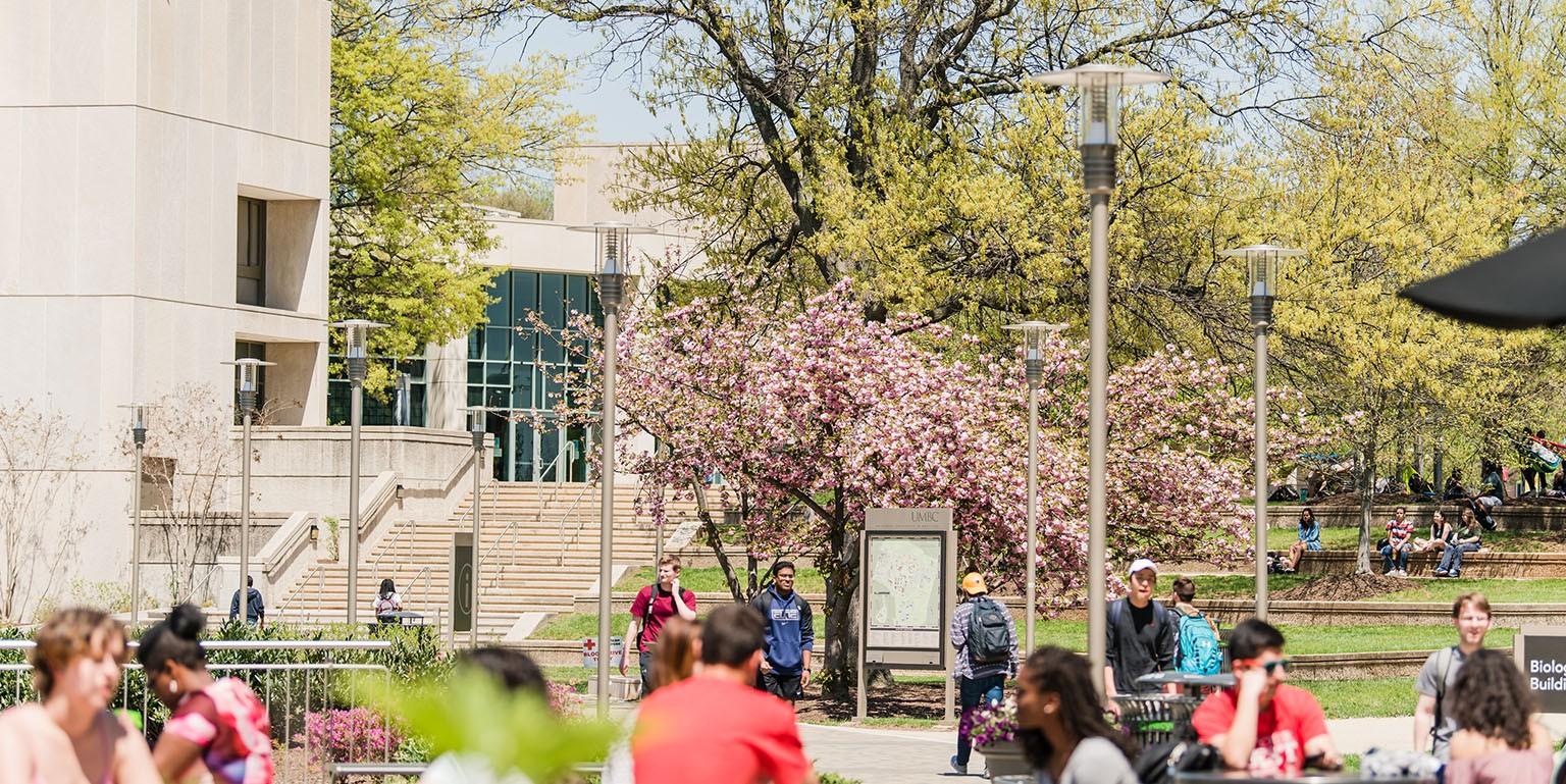 University of Maryland Baltimore County | LinkedIn