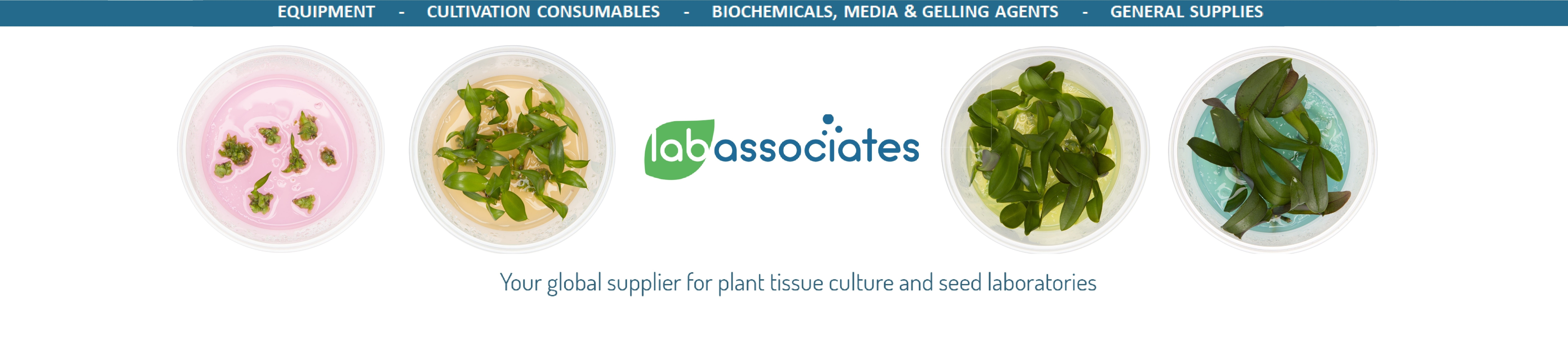 Lab Associates B V  | LinkedIn