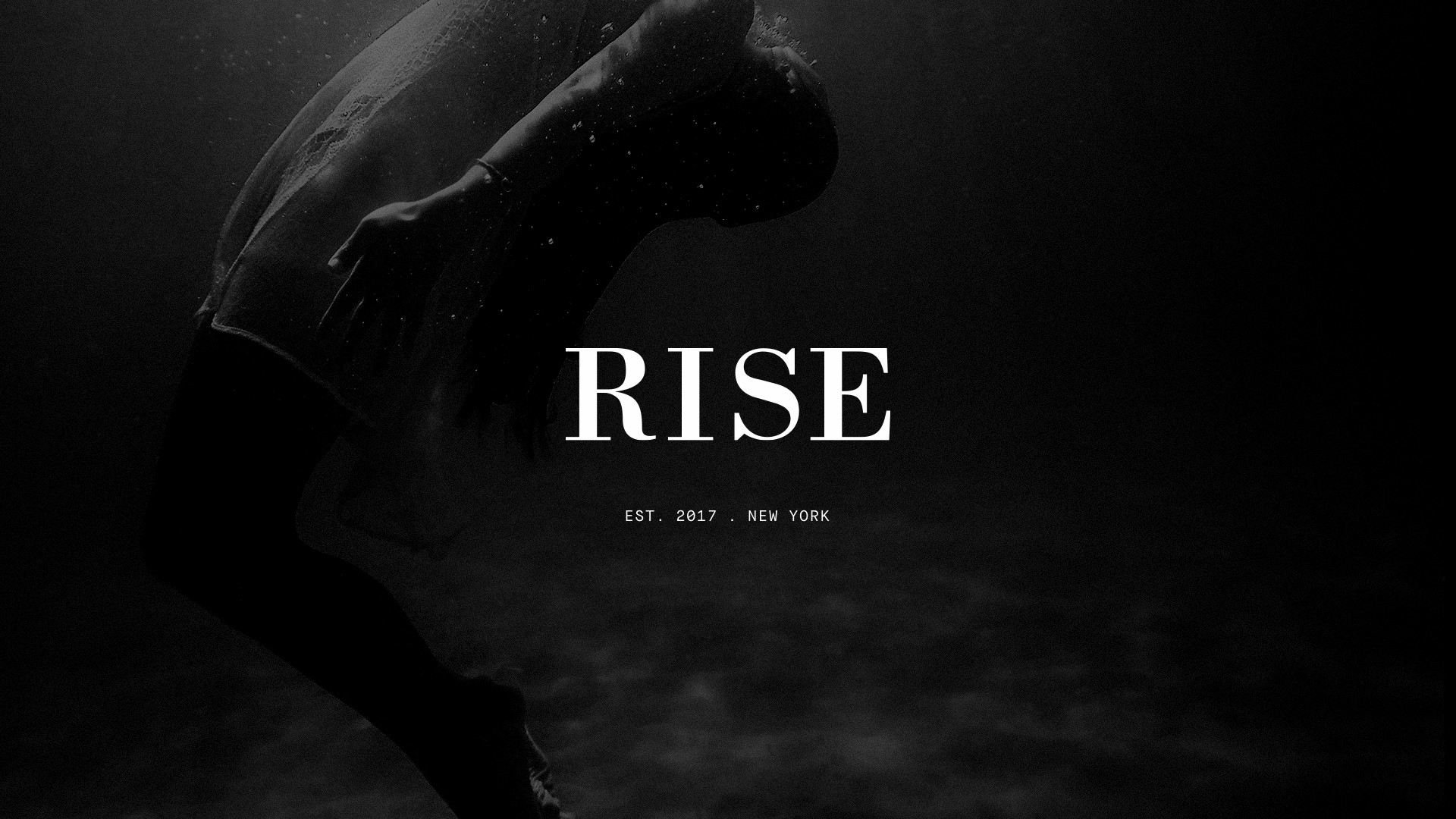 Rise New York & Partners | LinkedIn