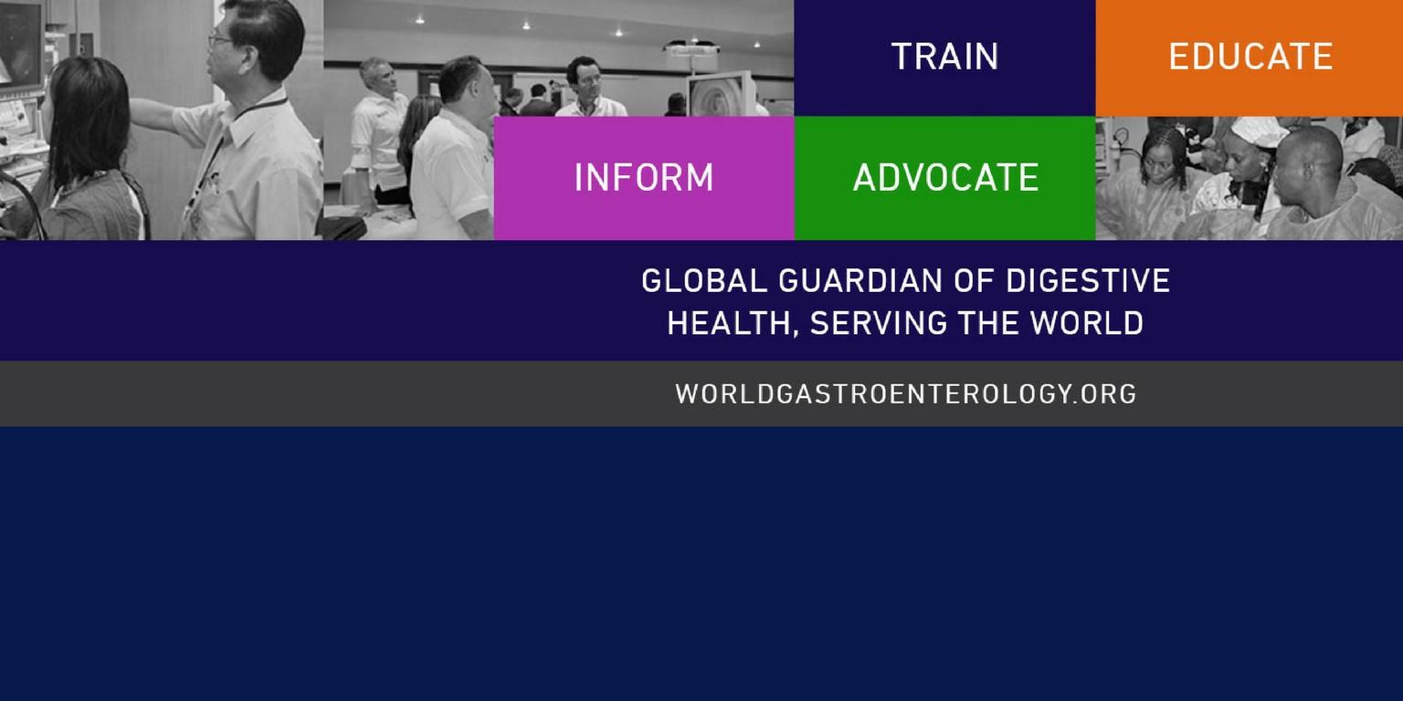 World Gastroenterology Organisation (WGO) / WGO Foundation