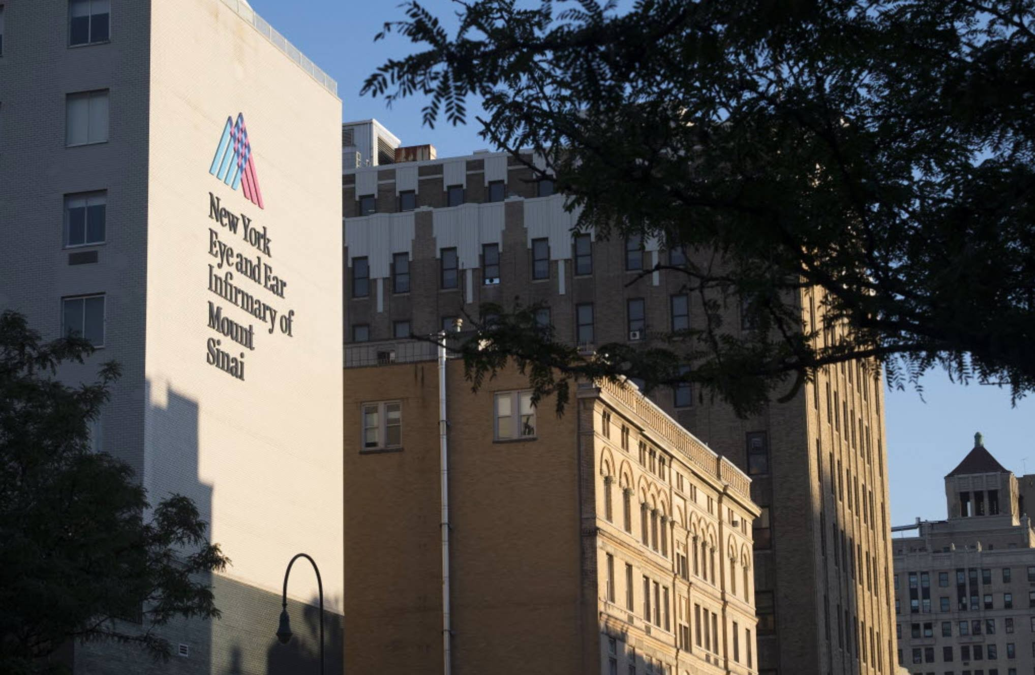 New York Eye and Ear Infirmary of Mount Sinai | LinkedIn