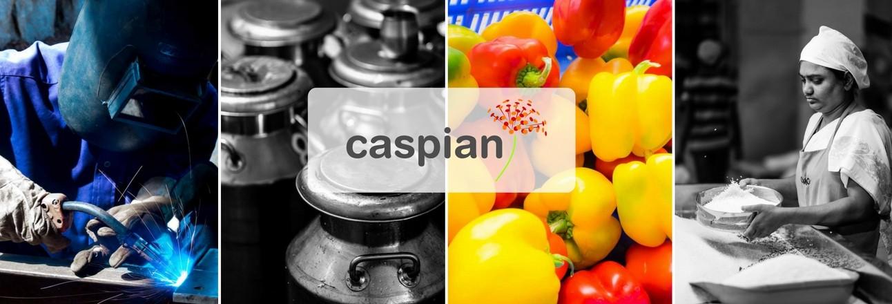 Caspian Impact | LinkedIn