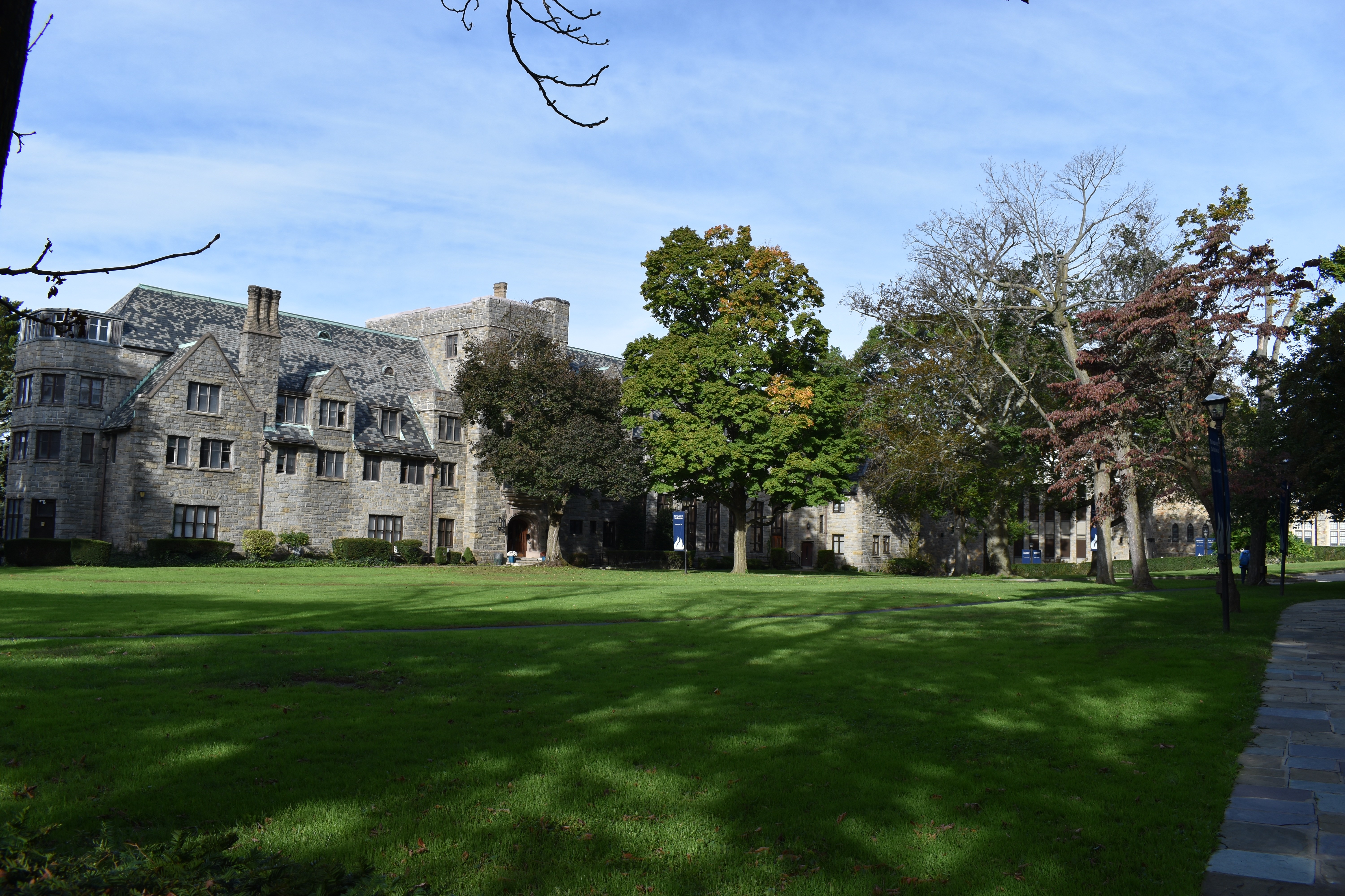 College Of New Rochelle >> The College Of New Rochelle Linkedin