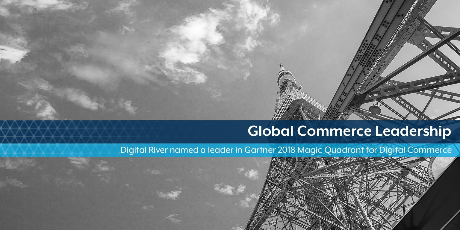 digital river ireland ltd contact number