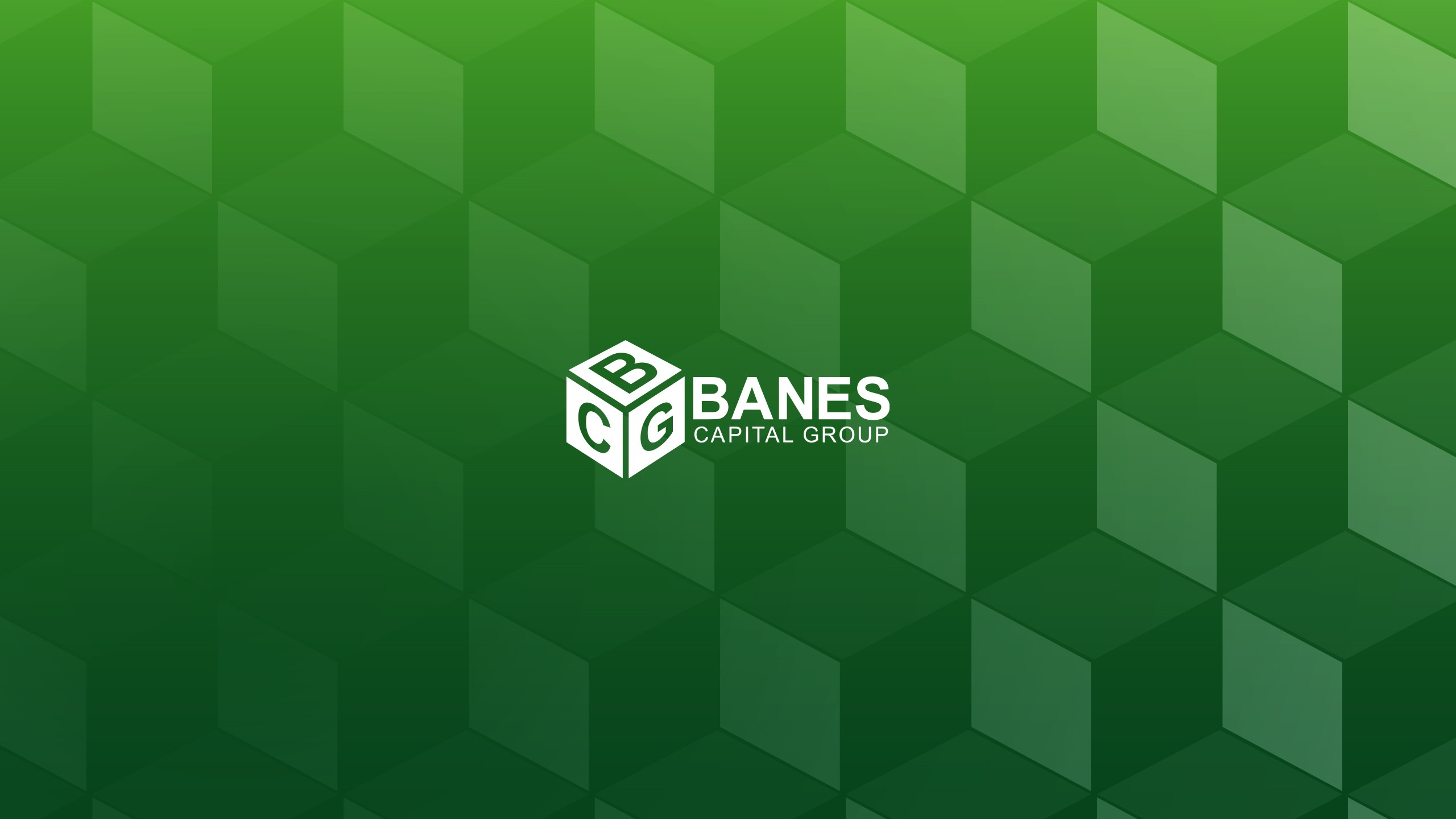 Banes Capital Group, LLC   LinkedIn