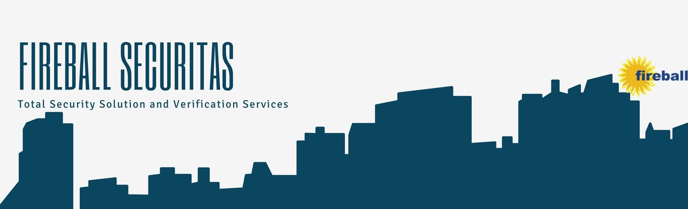 Fireball Securitas & Consultants Pvt  Ltd  | LinkedIn