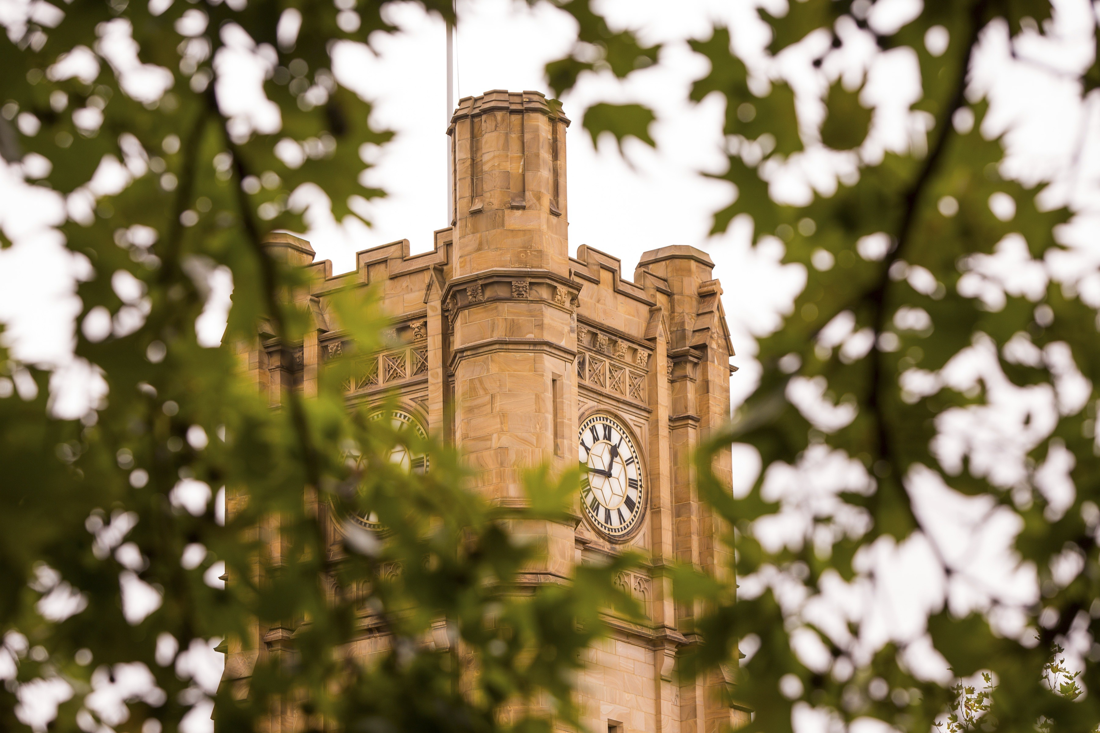 University of Melbourne | LinkedIn
