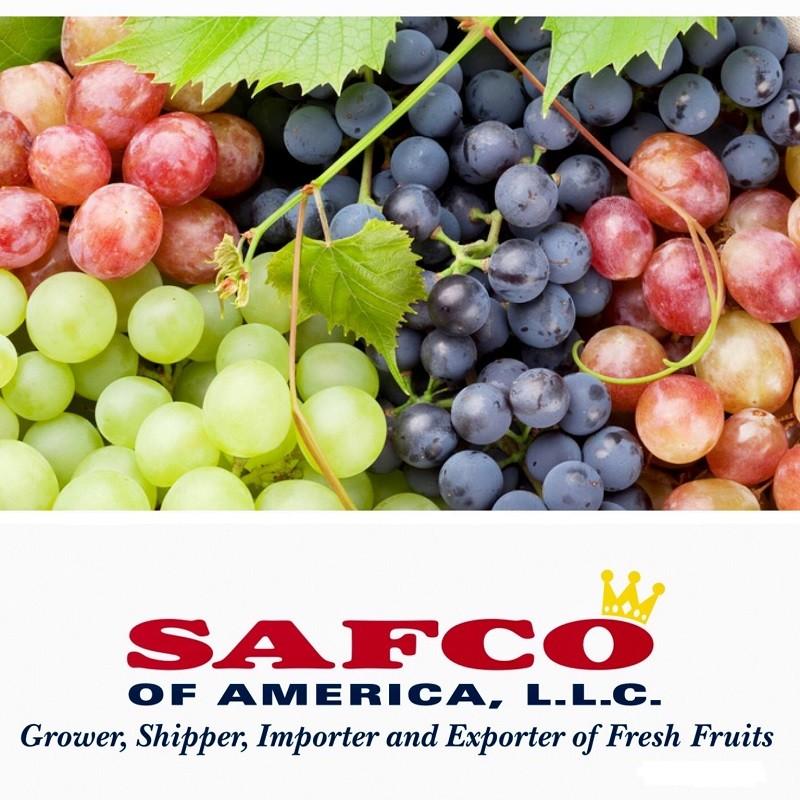 Safco of America,LLC | LinkedIn