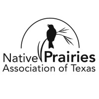 Image result for native prairie association of texas logo