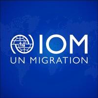 IOM - UN Migration | LinkedIn