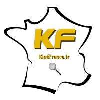 Kine France Fr Linkedin
