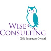 Wise Consulting Associates Linkedin