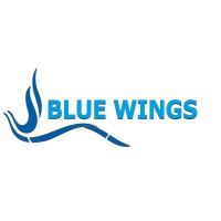Blue Wings Contracting W L L | LinkedIn