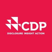 Risultati immagini per cdp disclosure