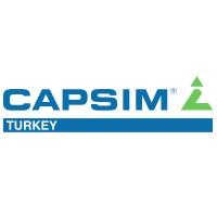 Capsim Turkey Management Simulations | LinkedIn