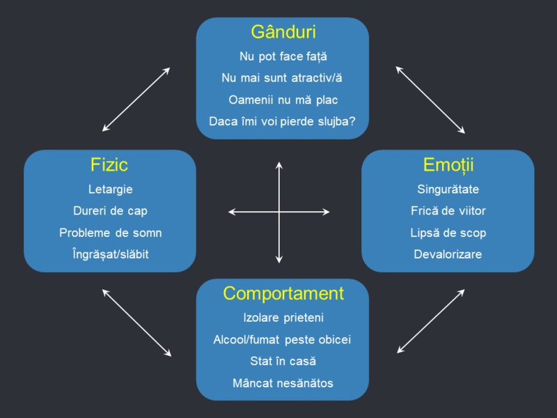 Adrian Vintu - Agile, Lean, and Scrum Coach - CryptoHubAcademy ...