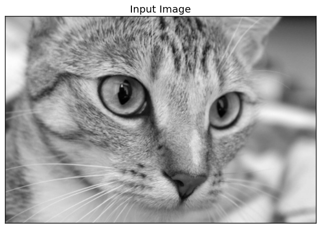 Building Convolutional Neural Network using NumPy from Scratch