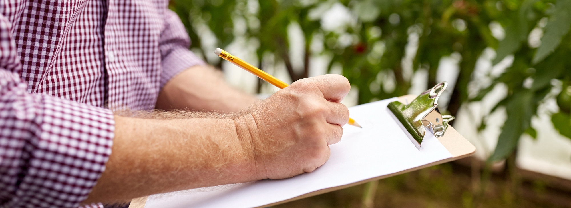 Man in garden listing needs on sheet of paper