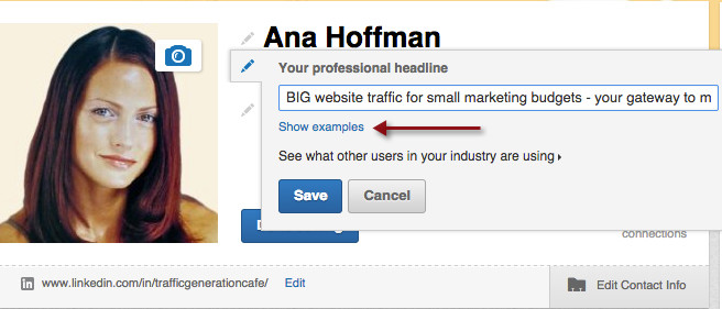 that shows you examples of what other users in your industry are using for their linkedin headlines its accessible in the edit profile mode after - Sample Resume Profile Headline Examples