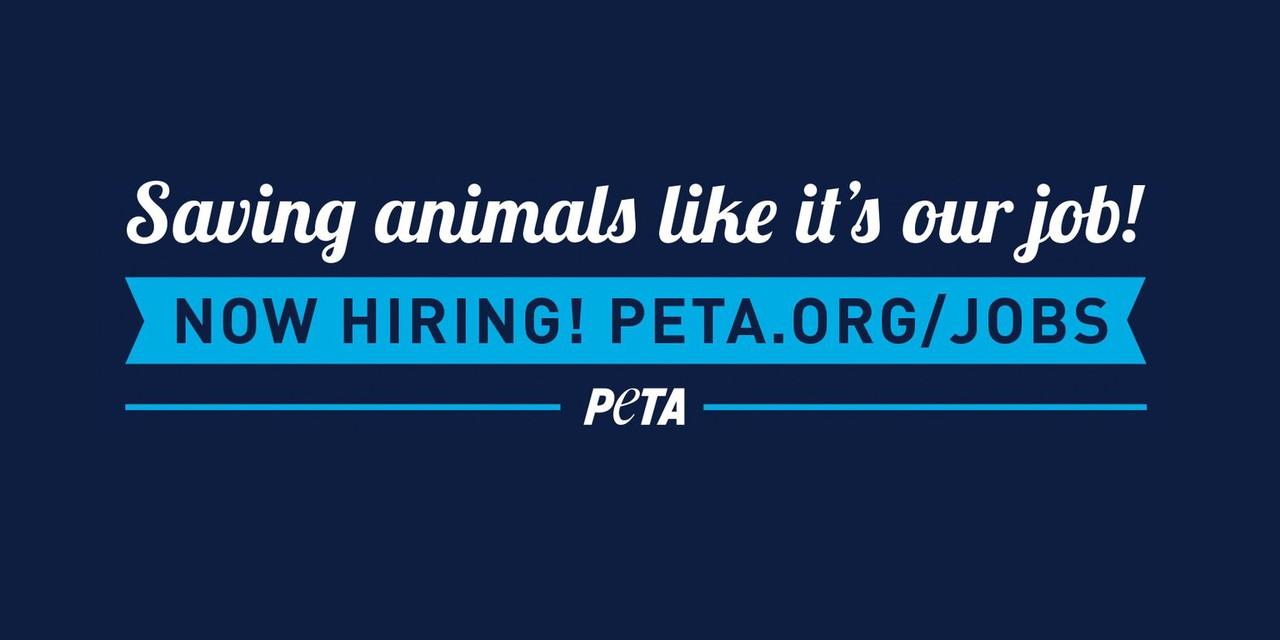 PETA | LinkedIn