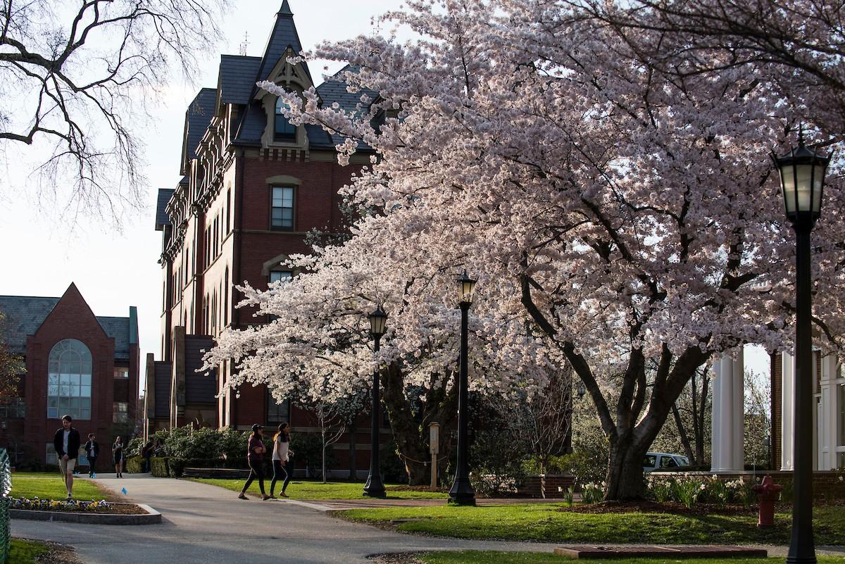 Tufts University   LinkedIn