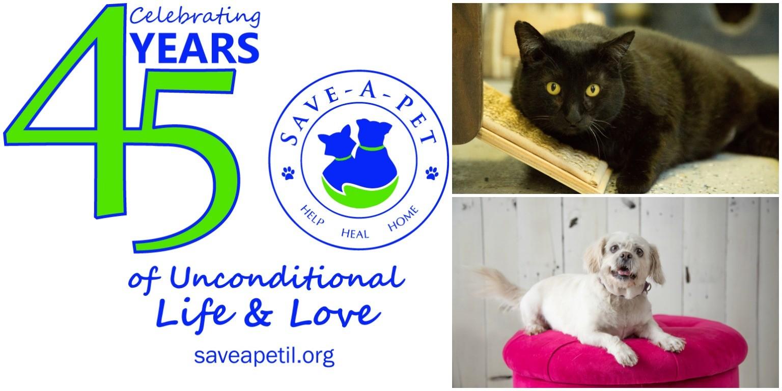 Save-A-Pet, Inc | LinkedIn