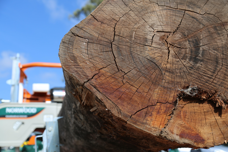 Norwood Portable Sawmills | LinkedIn