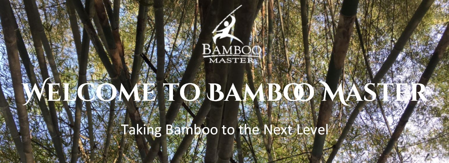 Image result for bamboo master