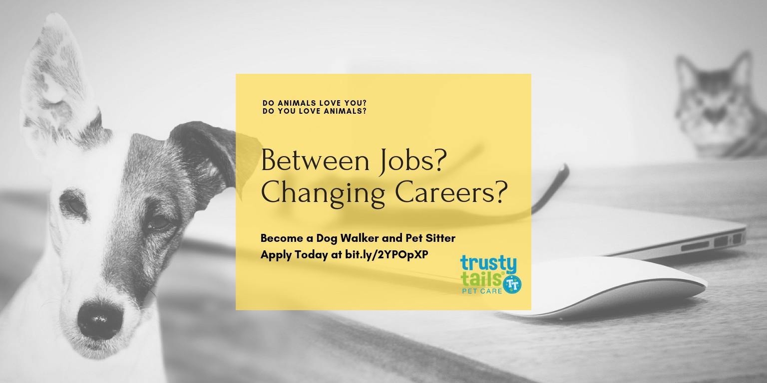 Trusty Tails Pet Care | LinkedIn