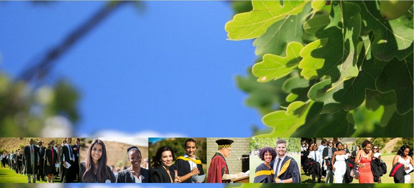 Stellenbosch University: Jobs   LinkedIn