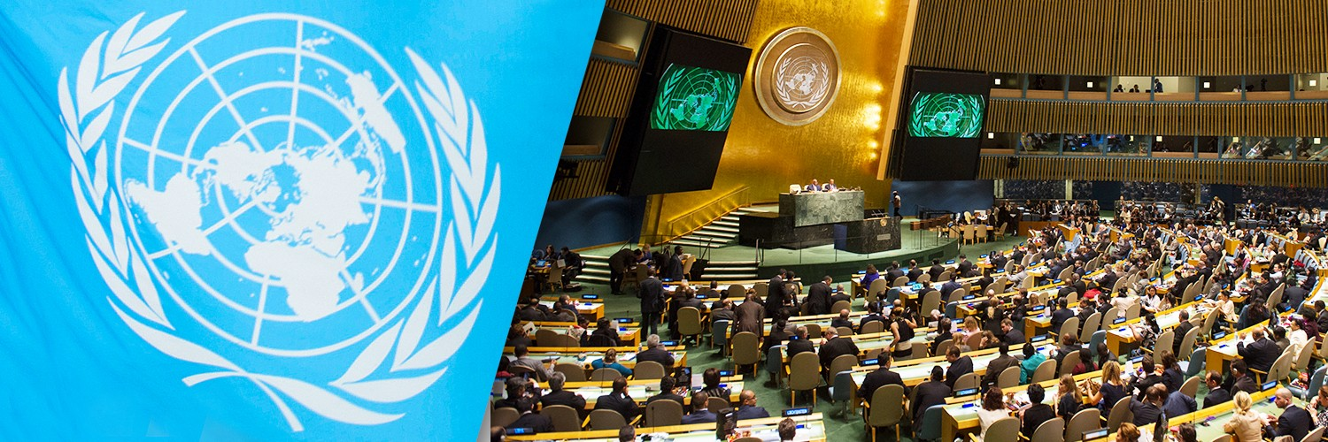 United Nations | LinkedIn