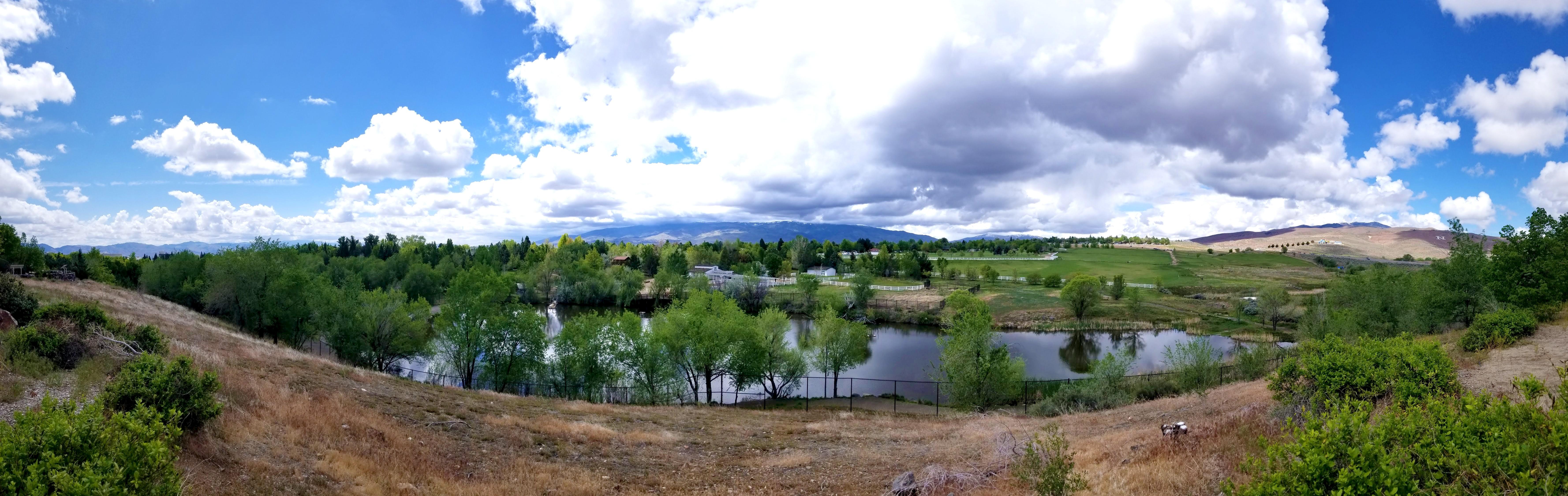 Washoe County, State of Nevada   LinkedIn