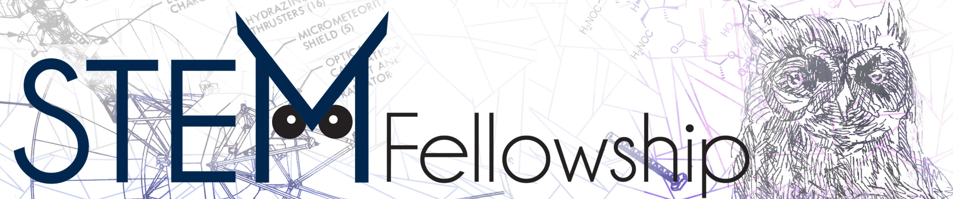 STEM Fellowship - Student Research and Innovation Network | LinkedIn