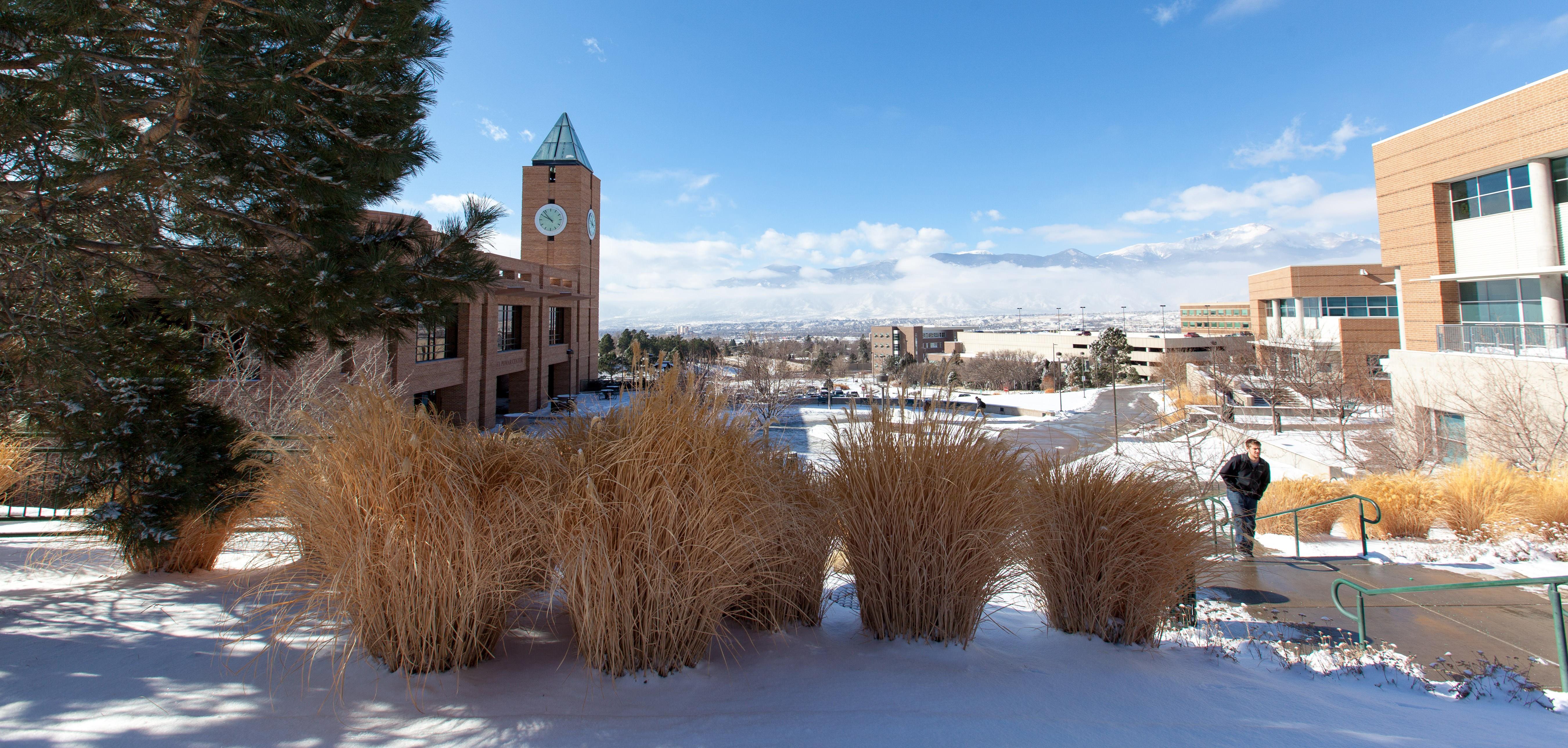 University of Colorado Colorado Springs | LinkedIn