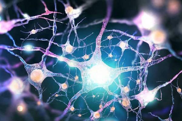 Triangle Neuropsychology Services   LinkedIn
