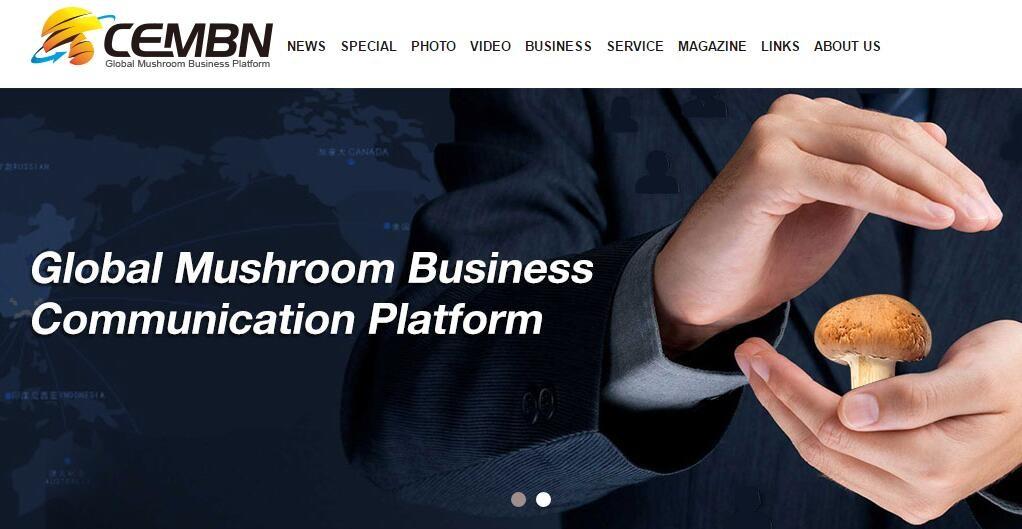 China Edible Mushroom Business Net   LinkedIn