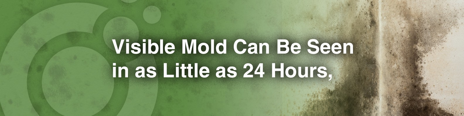 Mold Inspection Sciences, Inc  | LinkedIn