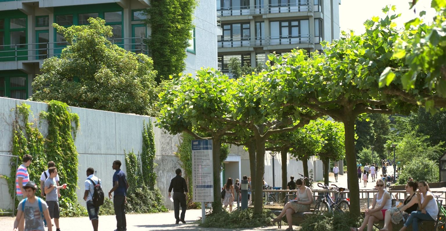 University of Düsseldorf | LinkedIn