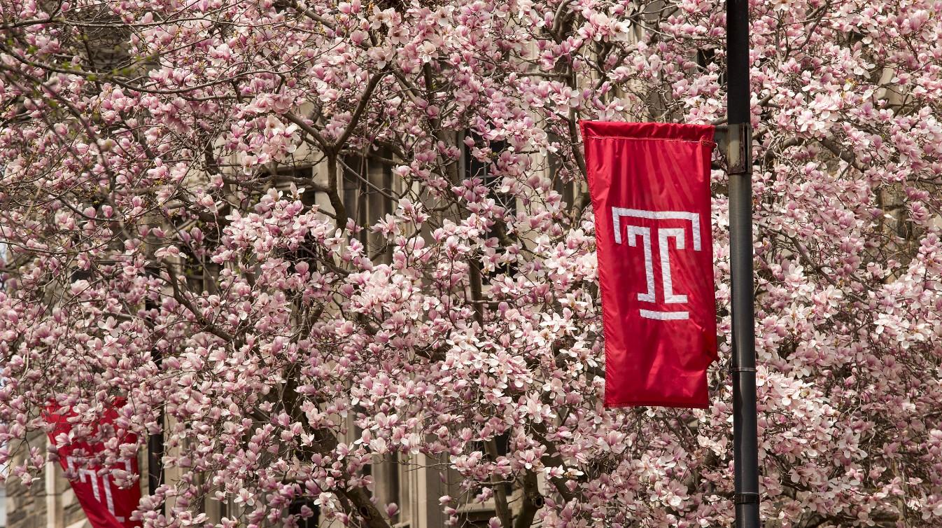 Temple University - James E  Beasley School of Law | LinkedIn