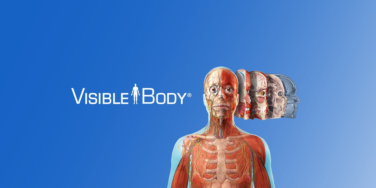 Visible Body | LinkedIn